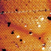View full-size image Image of the two-dimensional honeycomb structure of silicene as captured by a scanning tunneling microscope. Credit: Patrick Vogt/TU Berlin Rights Information